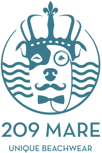 A close up of the 209 Mare fashion ecommerce logo